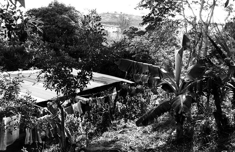 De la verdure sous la tôle - Sakamoto est un squat à flanc de colline, sur la route qui descend du rond-point de la vierge à Nouméa. C'est un terrain municipal où l'habitat spontané ne cesse de s'étendre depuis 1989. Aujourd'hui une soixantaine de familles vivent là, surtout des Kanak, des Vanuatais, et des Wallisiens. Ils sont regroupés en associations et ont obtenu des compteurs pour l'eau courante.