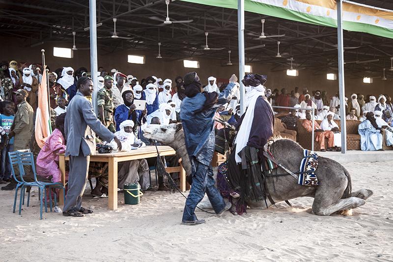 Le concours de dressage de chameaux a suscité l'engouement des spectateurs.