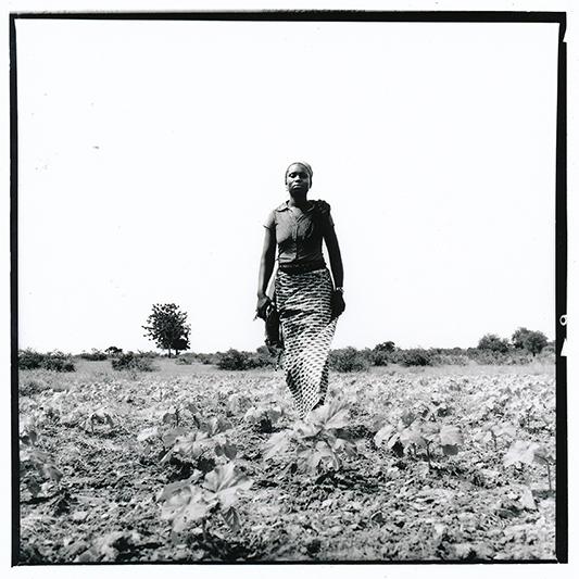 Alimata, 26 ans, fait pousser arachides, gombo et oignons, tout en tenant un commerce de charbon. Mariée depuis 7 ans à un 'Italien' elle n'a pas passé plus de 6 mois avec lui sous le même toit depuis leur mariage. Il revient tous les 2 ou 3 ans, selon ses moyens. Ce n'est pas la vie qu'elle aurait voulu, mais